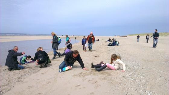 Fossielenexpeditie op het Maasvlaktestrand